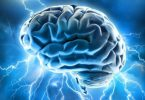 14601014695_30cfe1972d_brain