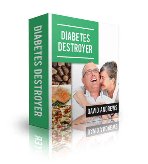 The Diabetes Destroyer Ebook