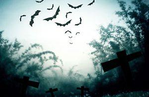 Best Halloween Bat Decorations