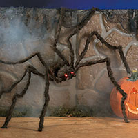 Shop Now For Big Halloween Spider Decorations
