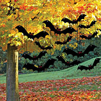 Shop Now For Halloween Hanging Bat Decorations