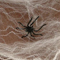 Shop Now For Spider Web Decorations For Halloween