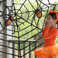 Shop Now For Cute Spider Decorations