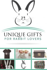 Best Gift Ideas For Rabbit Lovers
