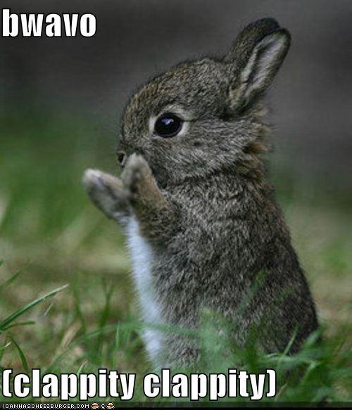 Bunny Clapping Congratulations