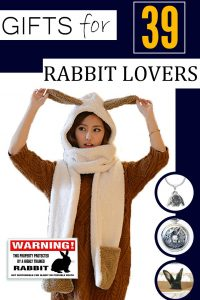 Gift Ideas For Rabbit Lovers