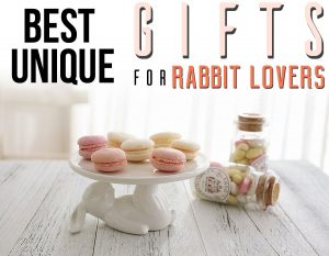 Best Unique Gifts And Gift Ideas For Rabbit Lovers And Bunny Owners