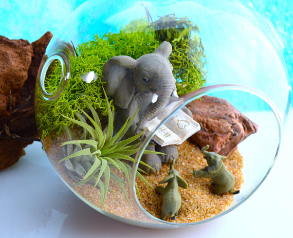 Terrarium Featuring An Elephant For Mother's Day