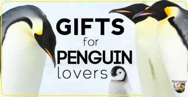 Awesome and unique penguin gifts and gift ideas for penguin lovers.