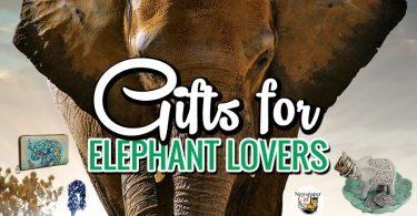 Awesome collection of cool and unique gifts and gift ideas for elephant lovers.