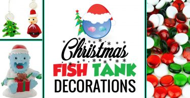 Cool and unique Christmas fish tank decorations and ideas for a fun and festive aquarium.