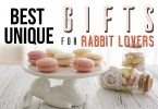Best Unique Gifts & Gift Ideas For Bunny Rabbit Lovers