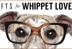 The Best Gifts & Gift Ideas For Whippet Lovers And Whippet Owners Including The Unique And Unusual