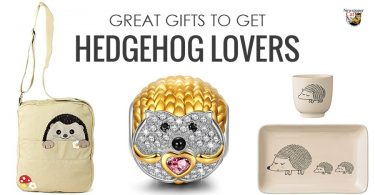 Find the best gifts for hedgehog lovers from the cute to the unique and unusual.